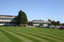A vast corporate property, maintained meticulously by International Landscaping.